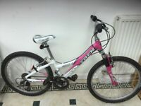 Girls Trek bike