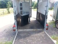 Ifor Williams double horse trailer up to 16.2hh