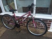 Hawk Tropical Ladies Bike - used but in very good condition