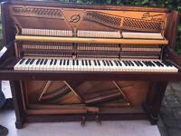 Beautiful danemann piano