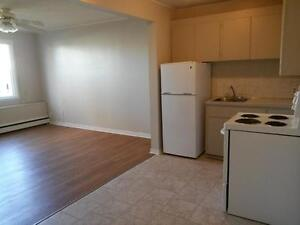 Super Cute 1 Bdrm Bsmt  Suite Avail Today!  - $600/mth