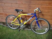 Trek 800 sport retro mountain bike, 26 inch wheels, 21 gears, 18 inch lightweight cro-mo frame
