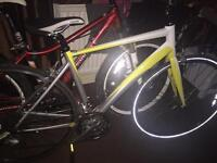 Giant dash 3 2010 for sale 130 Ono if collected tonight in good condition great racing bike