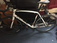 Specialized Allez E5 Sport 58cm road bike