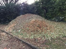 Free Garden Chippings