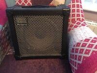 Roland Cube 30 Amplifier