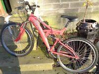 Trax adults mountain bike