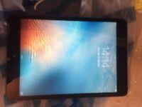 iPad mini must see