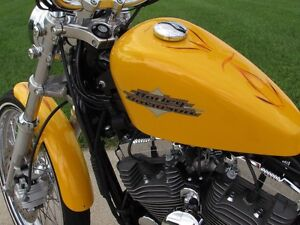 2013 harley-davidson XL1200V Seventy-Two   Chrome Yellow Pearl & London Ontario image 20