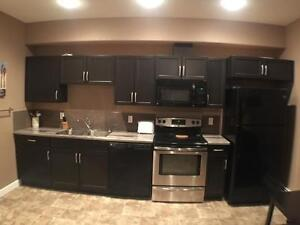 Furnished 2 Bedroom Basement Suite in Parsons Creek North