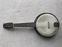 The Whirle Mandolin