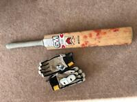 Cricket bat and gloves