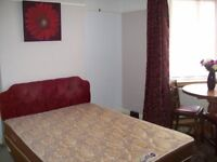 Spacious Double Room for a Non-Smoking Professional