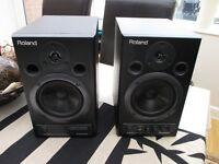 Roland DM-20 Studio Monitor Speakers