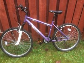 Girls Apollo Twilight Mountain Bike