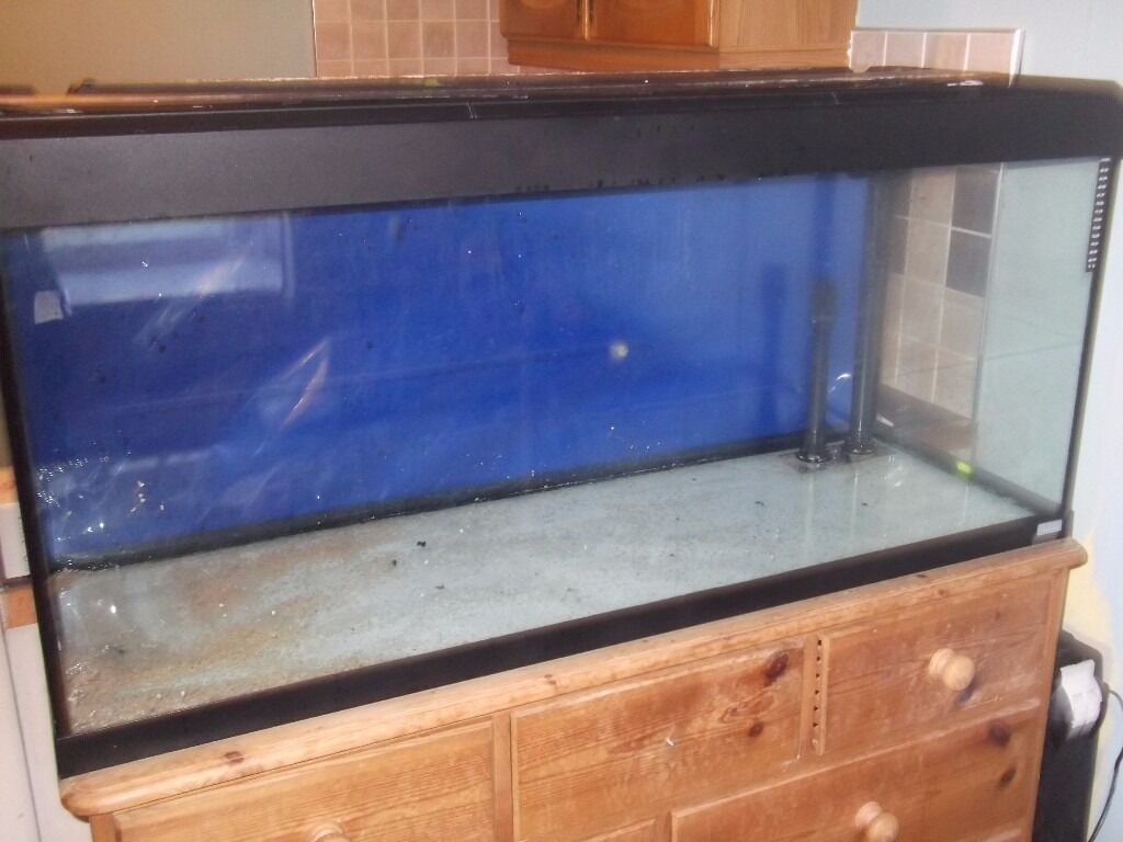 Fluval roma 240 aquarium fish tank - Fluval Roma 240 Fish Tank Pre Drilled For External Filter