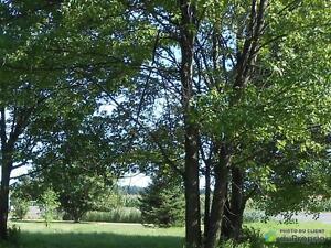 20 000$ - Terrain résidentiel à vendre à St-François-Du-Lac