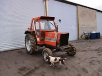Tractor FIAT680 2W/D £1,900 + Vat