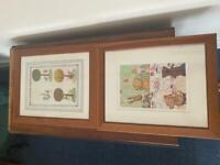 Pine pictures in frames for nursery or childcare room