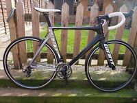 Carbon Giant Propel
