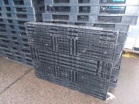 Black Plastic Pallets for sale