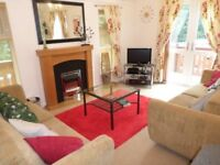 Immaculate 2006 Log Cabin for sale at Percy Wood Country Park near Alnwick in Northumberland