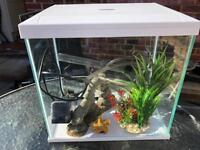 Aqua Fish tank
