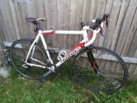 Wilier Montegrappa road bike / racing bicycle (like Specialized Allez, Boardman, Giant, Cube)