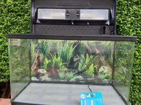 120L fish tank and artificial plants