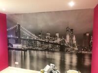 HMC Handyman Services, TV's wall mounted, wallpapering, painting, laminate flooring