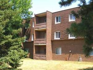 72 Devonshire Avenue - Two Bedroom Apartment Apartment for Rent