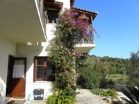 SKIATHOS Holiday villa, secluded,rural, English neighbours, 60+ safe beaches, car required.