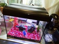 Aqua one eco style fish tank 30 litres