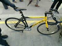 Carrera mens road bike