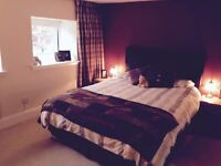 Beautiful large double room in perfect location