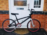 BARGAIN. PROFESSIONAL LIGHTWEIGHT BMX RACING BIKE