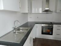 Stunning newly converted two bedroom flat. Located near Peckham Rye and Queens Road station.