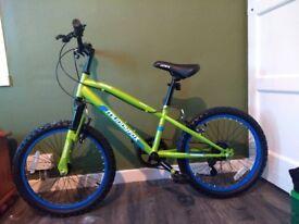 20 Inch Muddyfox Alpha Hardtail Mountain Bike for sale