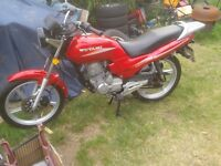 motorbike 125 cc starts and runs clean bike needs small work