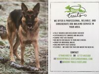 Waggin trails dog walking and pet care