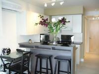 Magnifique logement 1 ½ (Plateau Mont-Royal)