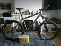 Van Nicholas Mamtor titanium mountain bike