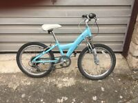 Lovely girls Skye bike, in good condition with excellent tyres.