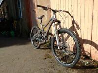 Custom Giant Reign X Mountain Bike (2007 frame) High Spec! Rockshox Totem forks