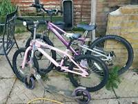 Kids bikes and scooter