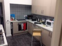 1 Double room available in professional house share