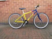 GIANT 14.5inch MOUNTAIN BIKE with EXTRAS