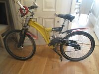 Stealth Limited Edition Mountain Bike