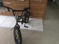 BMX Barracuda 20inch stance freestyle bike