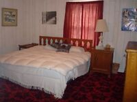 BEAUTIFUL ROOM IN GOOD HOUSE IN CANNING